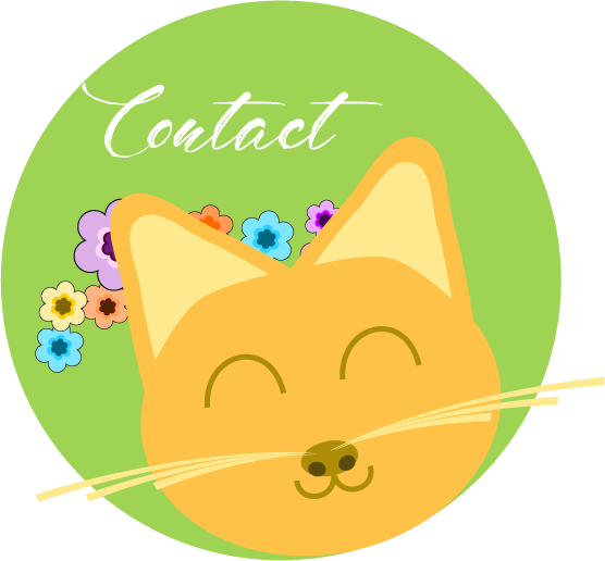 Contact blog